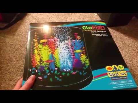 3 gallon Tetra Glofish tank/aquarium kit