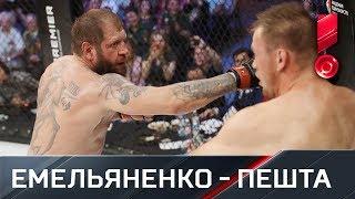 Александр Емельяненко техническим нокаутом победил Виктора Пешту
