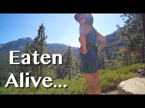 EATEN ALIVE [Adventure #22]