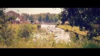 David Guetta & Showtek   Sun Goes Down Feat  MAGIC! & Sonny Wilson TOMORROWLAND VIDEO
