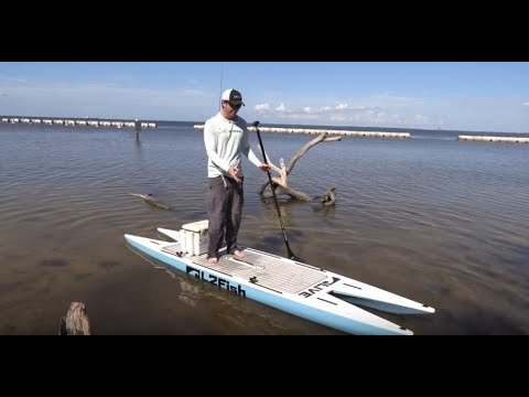 L2FISH PADDLE BOARD REVIEW (Catamaran SUP)