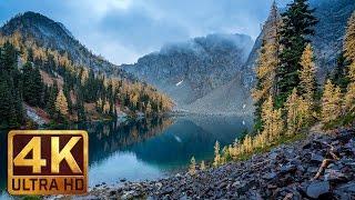 "4K Scenic Nature Documentary ""Beautiful Washington""Autumn Nature Scenery   Episode 5 In 4K"