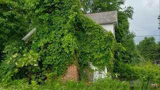 Abandoned Overgrown Farm House And Farm Stand
