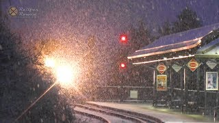 ❆❅❄SNOW DAY!!  Amtrak, VRE, NS Trains in Snow! ❆❅❄  | Railfan Rowan
