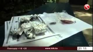 В Алматы начали бесплатно раздавать наркотики. Новости России, Казахстана, Беларуси