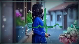 اغاني حصرية احمد الغريب عزيز الكلب والعين رحل مني تحميل MP3