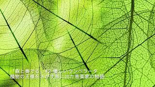 """ラジオドラマ""""森と奏でる""""#2"""