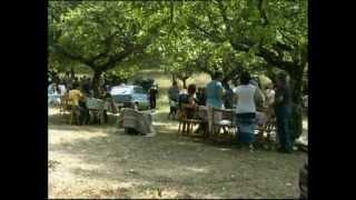 preview picture of video 'Festa del Beato Giolo - Sellano - 10 luglio 2003'