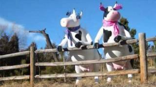 I Am Cow.wmv