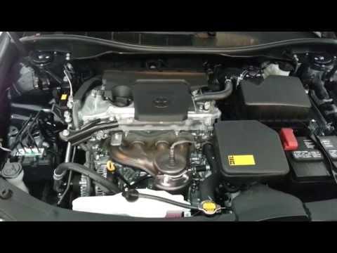 Volkswagen transporter das Benzin der Brennstoffverbrauch