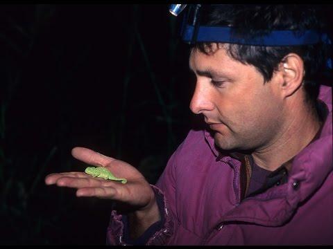 שנת הזיקית - סיפורו המרתק של חוקר טבע ישראלי