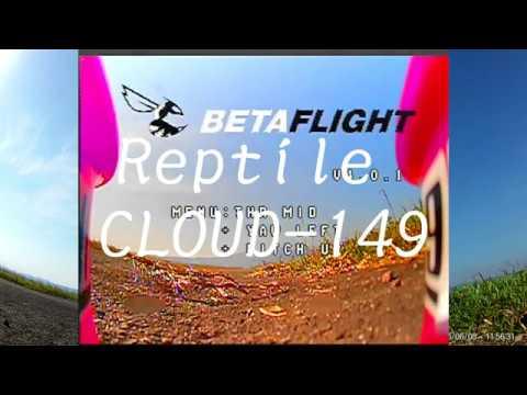 Reptile CLOUD-149
