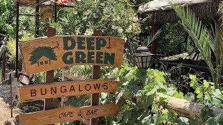 Olimpos(Olympos) Deep Green Bungalows Tanıtım | Olympos Pansiyon Öneri