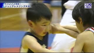 びわ湖放送ニュース3月30日 ジュニアレスリング大会