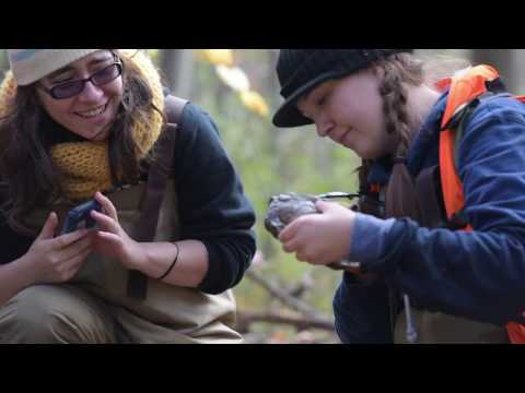 Field Research ::  Smithsonian-Mason School of Conservation