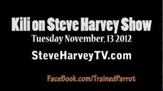 Kili Senegal Parrot - Steve Harvey TV Show