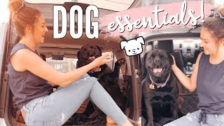 Travel Dog Essentials + At Home Must Haves!!