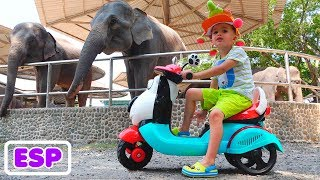 La pequeña Nikita viaja y juega en el zoológico Video para niños