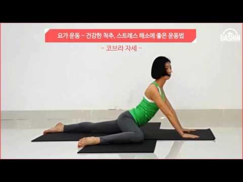 [요가 운동] 건강한 척추, 스트레스 해소에 좋은 운동법
