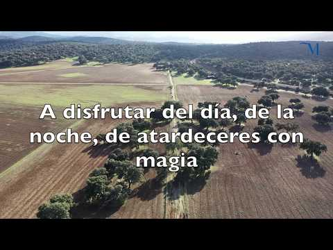 #QUÉDATE EN CASA (Diputación de Málaga)