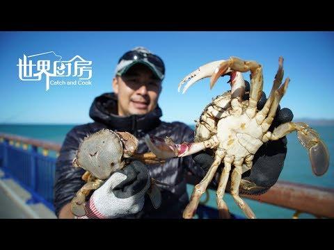 Christchurch 基督城 跟着海猩钓奥鲈鱼,新西兰 毛利名kahawai 卡哇伊鱼