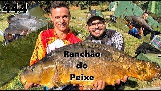 As gigantes do Pesqueiro Ranchão do Peixe - Fishingtur na TV 444