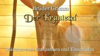 Der Krautesel – Märchen Der Brüder Grimm Für Kinder Und Erwachsene (KHM 122)