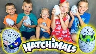 HATCHIMALS || Magical Surprise Animals Hatch from GIANT EGGS!! | Kholo.pk