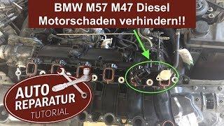 BMW Drallklappen entfernen um Motorschaden zu verhindern ‼️ M57 M47 | DIY Tutorial