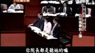蔡英文大戰泛藍立委經典畫面(東森新聞)