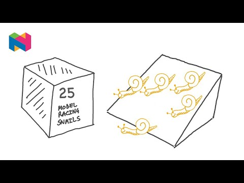 Snail Racing Logic Puzzle | Popular Maths | YouTube