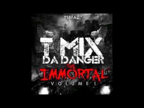 T mix da danger -Never Let It Go