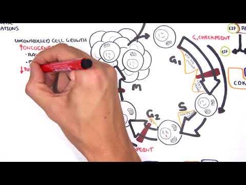 Onkogeny - patogeneza nowotworów (geny supresorowe i onkogeny)