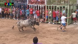 preview picture of video '10 Toros Fiestas Sant Bartomeu 2013 - Nules (Castellon) Bous al Carrer [Toros FJGNtv]'