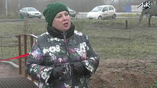 """ЛиК: Марина Левченко в сюжете """"В Мшинской появился первый сквер"""""""
