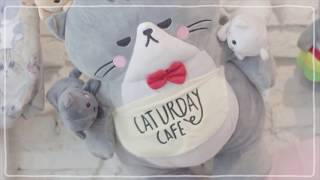 SistaCafe Channel : พาเที่ยว Saturday Cafe