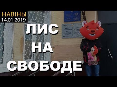 14.01.19. Новости ЛИС НА СВОБОДЕ!