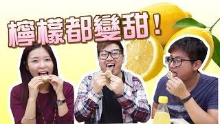 <1日1片>檸檬都變甜?台灣神秘果!