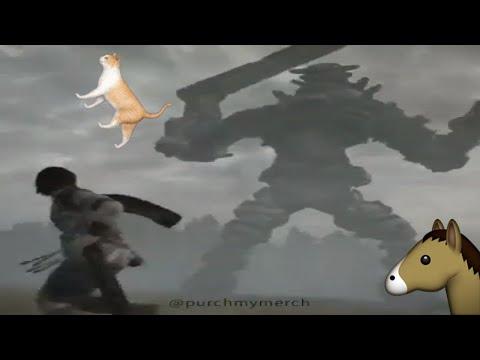 Cat video 𝖔𝖋 𝖙𝖍𝖊 𝕮𝖔𝖑𝖔𝖘𝖘𝖚𝖘 | ♛purchmymerch♛ 🅼🅴🅼🅴
