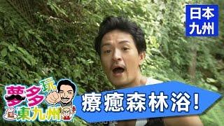 免費的終極減壓法!日之影町療癒森林浴!EP520161126part1/5夢多玩東九州日本旅遊