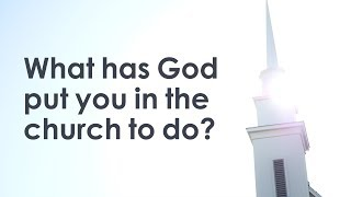What Has God Put You In the Church to Do?