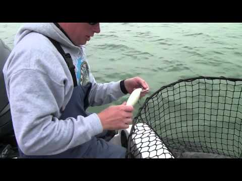 Musky Fishing Adventures – Keyes Outdoors 2012 - 8th show Detroit November Muskies Part 1A
