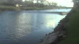 Hawaii Tsunami - From my backyard - Best Shot Yet! - Kailua, Oahu