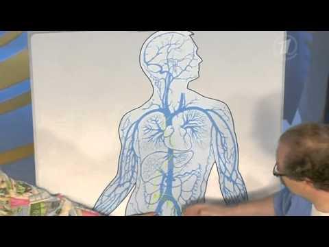 Современные методы лечения гепатита и
