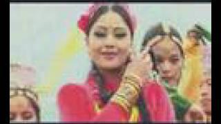 Nepali Folk  song : Kafal gedi kutukai