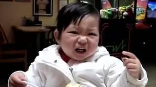 Des bébés mangent du citron pour la première fois