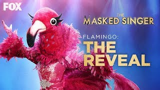 The Flamingo Is Revealed As Adrienne Bailon | Season 2 Ep. 13 | THE MASKED SINGER