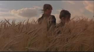 Angelo Branduardi - La Raccolta (Videoclip)