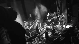 "Fortuna Ehrenfeld Feat. Kettcar   ""Hundeherz"" (Live In Kiel)"
