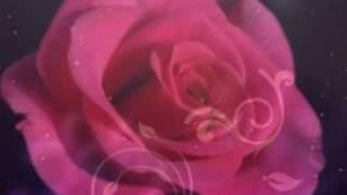 """Всегда говори """"всегда"""", Дарите женщинам цветы"""